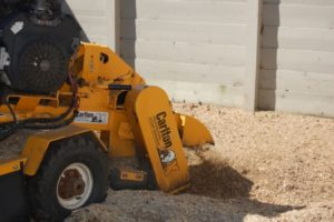 Stump grinder at work in Myrtle Beach operated by Timber Tree Service
