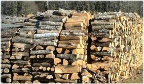 Myrtle Beach firewood delivery page pic.